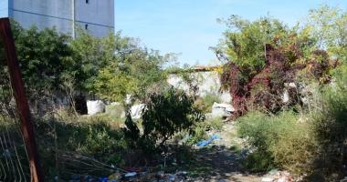 Amenzi usturătoare pentru proprietarii de clădiri şi terenuri neîntreţinute