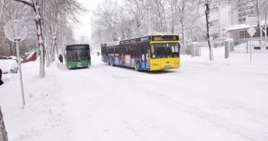 Viscole şi temperaturi extreme, iarna aceasta, la Constanţa