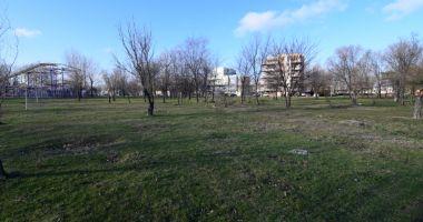 Dosarele X! Afaceri cu parcurile şi spaţiile verzi din Constanţa