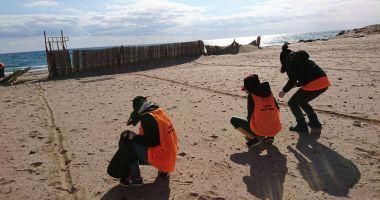 Plajele de pe litoral, sufocate de deşeuri