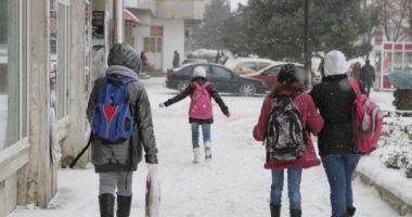 Toate şcolile din Constanţa, închise mâine şi poimâine, pe 1 şi 2 martie