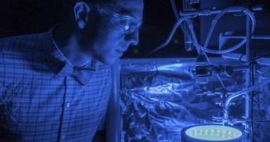 A fost inventată fotosinteza artificială. Procedeul curăță aerul poluat și produce energie