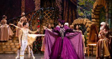 """""""Frumoasa şi Bestia"""", pe scena Teatrului """"Oleg Danovski"""""""