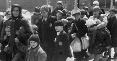 Profesorii de istorie vor participa la stagii de perfecţionare despre Holocaust