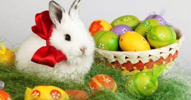 Viorica Dăncilă: Sărbători luminate şi binecuvântate credincioşilor care sărbătoresc Paştele şi urări de bine pentru Florii
