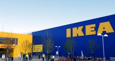 Ikea a mai cumpărat 12.800 de hectare de pădure în România