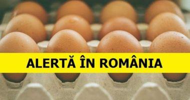 Ouăle contaminate cu Fipronil nu au ajuns la consumatori