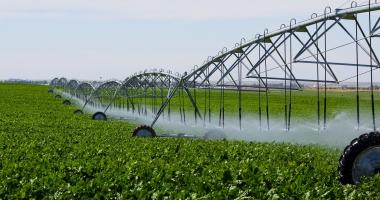 Ministrul Agriculturii: Cea mai mare problema este de a porni sistemul de irigatii