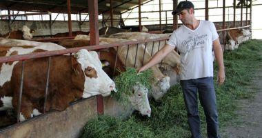 În atenția crescătorilor de animale