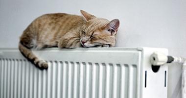 A început distribuţia formularelor pentru ajutoarele de încălzire, la Constanţa! Iată de unde le puteţi lua