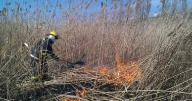 Peste 1.500 de hectare de terenuri arse  şi patru sancţiuni contravenţionale