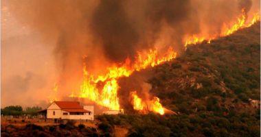 Noi incendii în Grecia: Locuitorii din două sate din apropiere de Atena au fost EVACUAȚI
