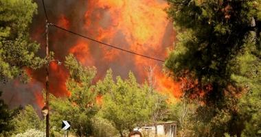 Stare de alertă în Grecia. Incendiile fac ravagii