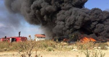 Galerie foto. Incendiu de amploare l�ng� Constan�a. Pompierii  au intervenit cu opt ma�ini