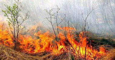 DEZASTRU LA HÂRŞOVA! Ard hectare de vegetaţie uscată! Pompierii sunt chemaţi de acasă!