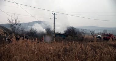 Zeci de animale salvate dintr-un incendiu în satul Negreşti