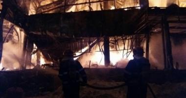 Vedetă scăpată din infernul de la Bamboo: