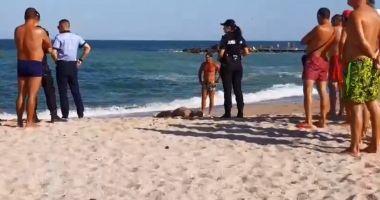 VIDEO / Persoana dispărută ieri, la Eforie a fost găsită şi scoasă la mal!