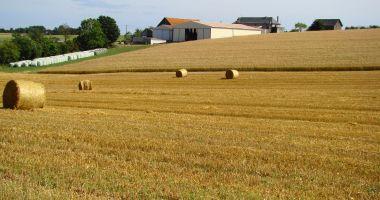 În iunie va fi lansat un program de investiţii în agricultură