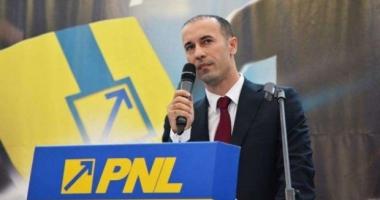 Iulian Dumitrescu, PNL: