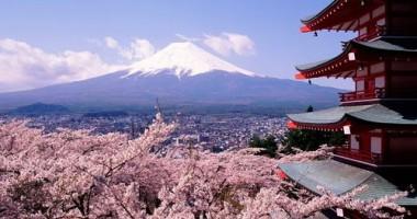 Japonia: Două sentinţe cu moartea puse în aplicare