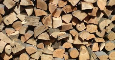 Primăria Constanţa. Începe plata ajutoarelor pentru încălzirea cu lemne