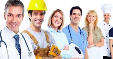 Locuri de muncă pentru şomeri. Care este oferta