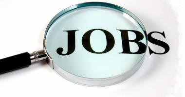 Unde se pot angaja şomerii constănţeni