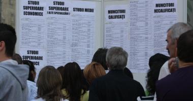 Cauţi de muncă? Iată câte locuri de muncă sunt vacante în reţeaua Eures