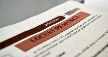 Locuri de muncă vacante pentru șomeri. Iată ce se caută!