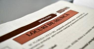 Locuri de muncă vacante pentru şomeri. Iată care sunt ofertele!