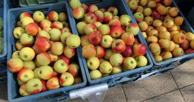 O femeie de 90 de ani a donat patru tone de mere pentru copii și adulții instituționalizați