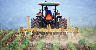 Măsuri de sprijinire a sectorului agricol