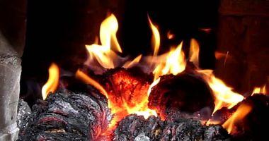 Un câine a dat foc unui bloc de locuinţe, după ce s-a jucat cu o brichetă
