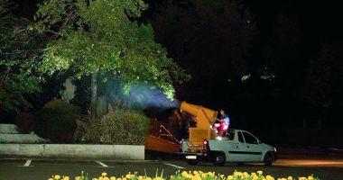 O nouă etapă de dezinsecție în municipiul Medgidia