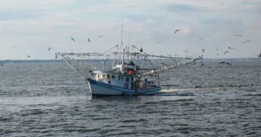 Misiune de salvare a unui pescador românesc. Ce spune Autoritatea Navală Română