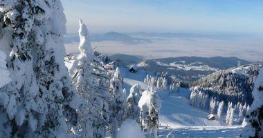 Cod galben de vânt puternic şi ninsori viscolite în zona de munte din 27 de judeţe, până duminică dimineaţa