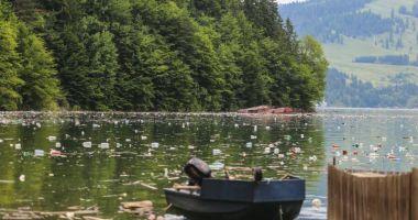 Reacția Hidroelectrica privind gunoaiele de pe lacul Bicaz