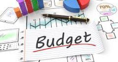 Omisiune grosolană în proiectul de buget