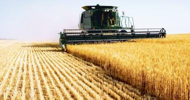 Orzul a fost recoltat de pe trei sferturi din suprafaţa de cultură