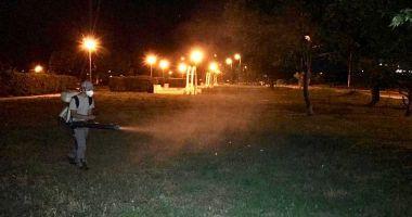 Parcurile din oraș, stropite împotriva insectelor de angajații primăriei