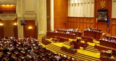 Cine va reprezenta Constanţa în Parlament