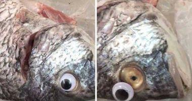 """INCREDIBIL PÂNĂ UNDE S-A AJUNS! Peşte în putrefacţie, """"împrospătat"""" cu ochi de plastic"""