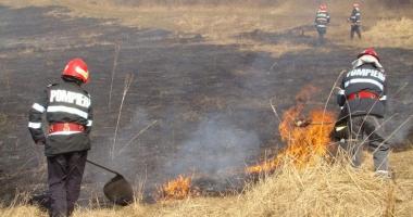 Pompierii const�n�eni, avertisment pentru cei care-�i incendiaz� terenurile
