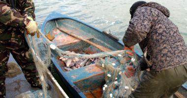 Prinşi de jandarmi în timp ce pescuiau ilegal