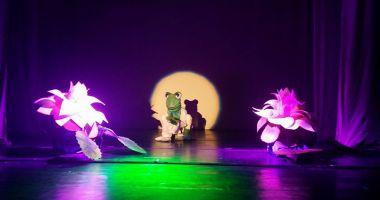 Prinţesa  îşi dă, din nou, întâlnire,  pe scenă,  cu broscoiul