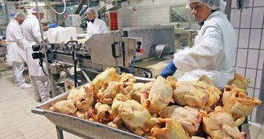 Producția de carne a scăzut îngrijorător
