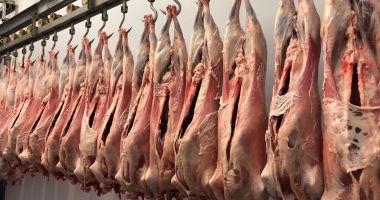 Producția de carne de oaie a explodat