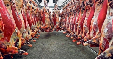 Iată cum a evoluat producția de carne
