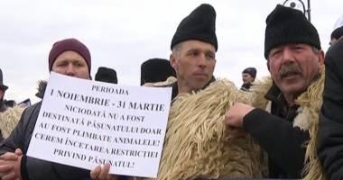 Ciobanii protestează în faţa Parlamentului